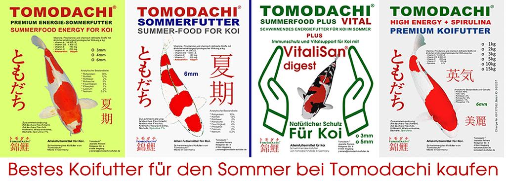 Tomodachi Sommerfutter für Koi günstig online kaufen